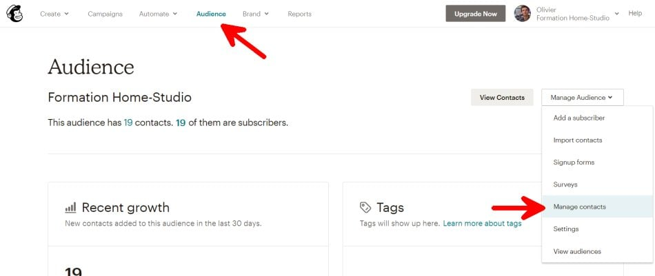 MailChimp Tags vs Groups vs Segments